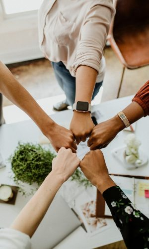 Download premium image of Business people bumping fits in the middle by McKinsey about fist bump, teamwork, business team, motivation, and achievement 1220994